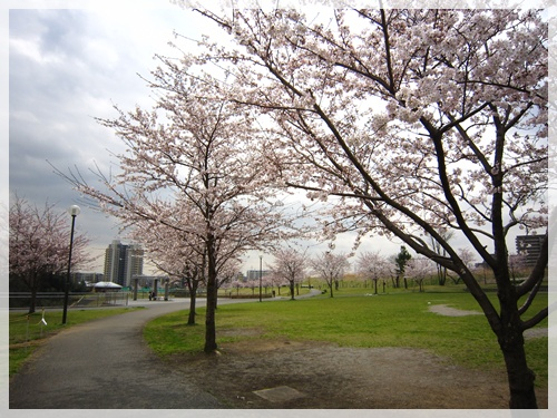 公園1.jpg